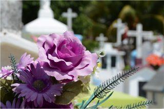 What would you like to ask about funerals and memorials?