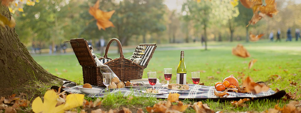 picnic-in-the-park-4.jpg