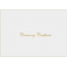 A4 White & Shiny Gold Ceremony envelope - No Rings - 8 pack