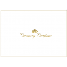 A4 White & Shiny Gold Ceremony envelope - With Rings x 1