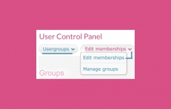 User groups section