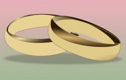 Civil unions and partnerships